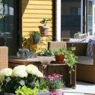 Näin teet terassille kesäilmeen: viherkasveilla, kesäkukilla ja tekstiileillä