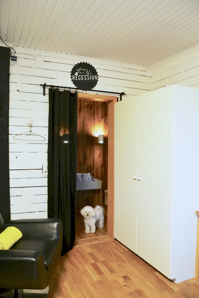 työhuoneen remontti ovi ja peppi (kopio)